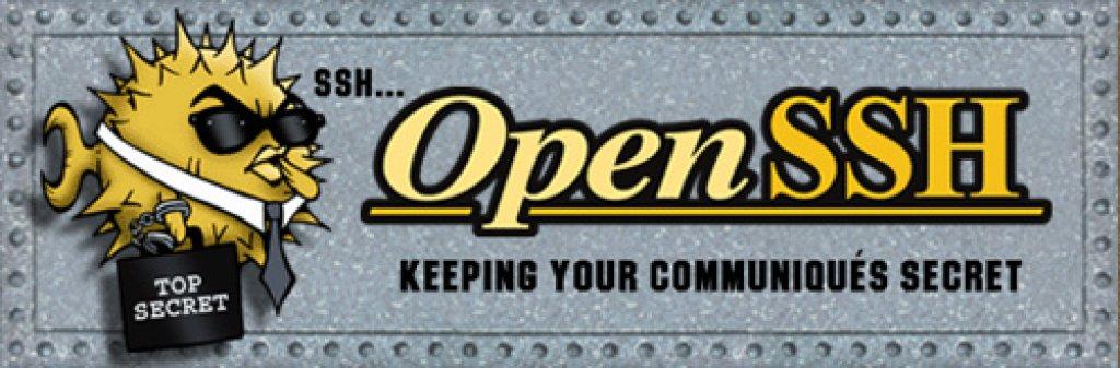 OpenSSH Server Logo